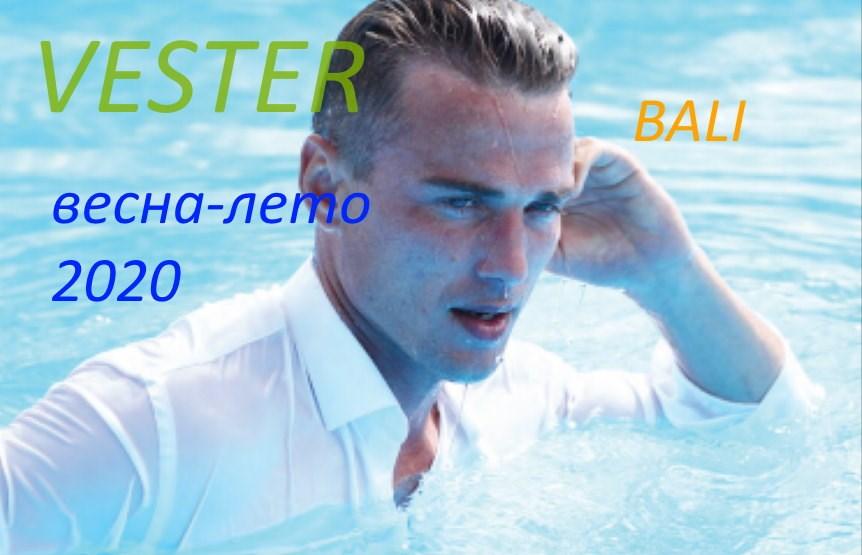 вестер 2020