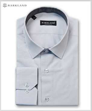 Мужская рубашка 20240 BSF BARKLAND приталенная - фото 11473