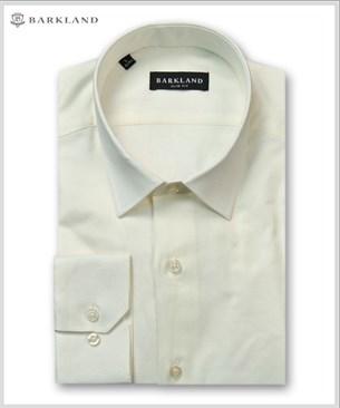Мужская рубашка 20258 BSF BARKLAND приталенная - фото 11479