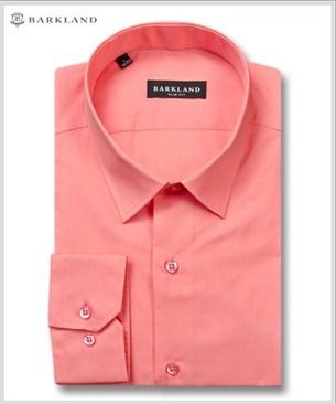 Мужская рубашка 1203 BSF BARKLAND приталенная - фото 11494