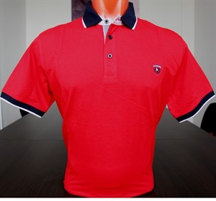 Рубашка поло мужская RETTEX BROSTEM 2745-1g - фото 11893