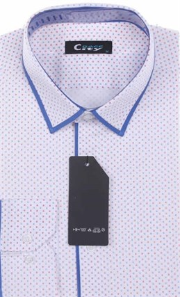 Мужская рубашка City Race BROSTEM приталенная  CR105-41 Z-pr - фото 12697
