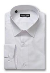 Мужская рубашка 1167 BRF BARKLAND полуприталенная