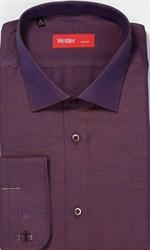 На высоких сорочка VESTER 707142-19 приталенная(Мин)