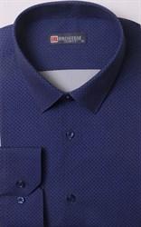 Мужская рубашка большого размера BROSTEM 1LG058-4